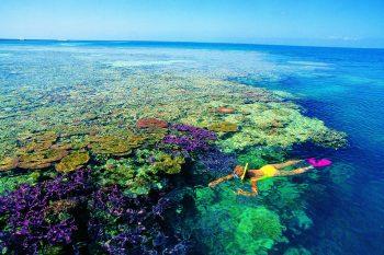 斐济旅游攻略 洛玛尼+希尔顿8天5晚浪漫蜜月之旅