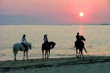 毛里求斯旅游攻略 天堂原乡之洲际酒店