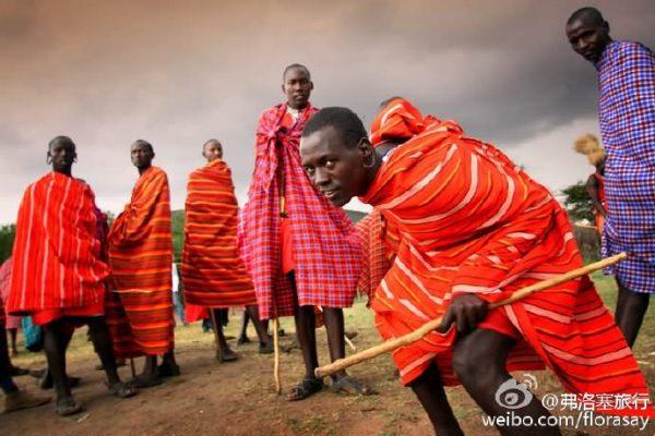 非洲游猎safari