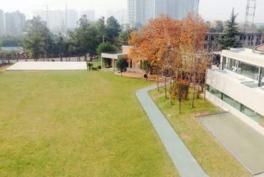 成都梵木创艺区正火艺术中心