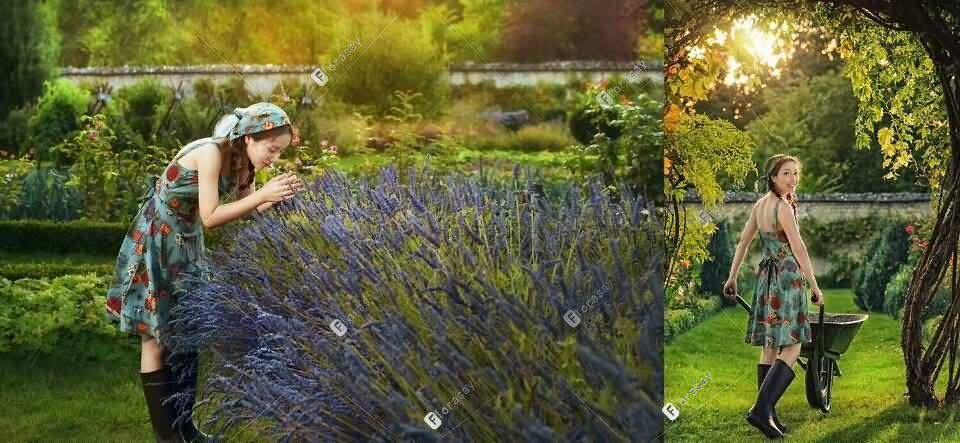 全球婚拍-花园之恋
