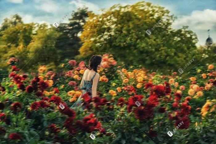 自然风海外婚礼婚拍:花园之恋