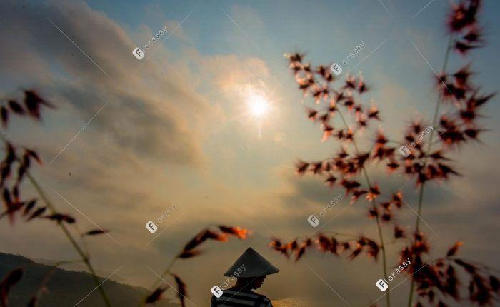 越南岘港太阳半岛度假村洲际酒店
