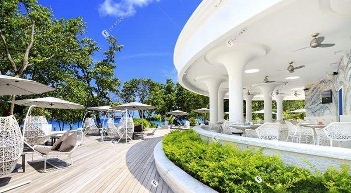 塞舌尔萨沃伊水疗度假酒店 海滩酒吧 / 壁虎吧