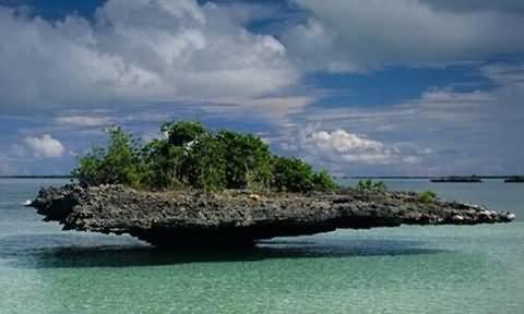塞舌尔阿尔达布拉环礁