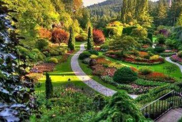 .维多利亚之布查特花园