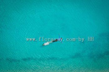 最接近天堂的地方之法属波利尼西亚大溪地婚礼,尽享私密淳朴原始海岛