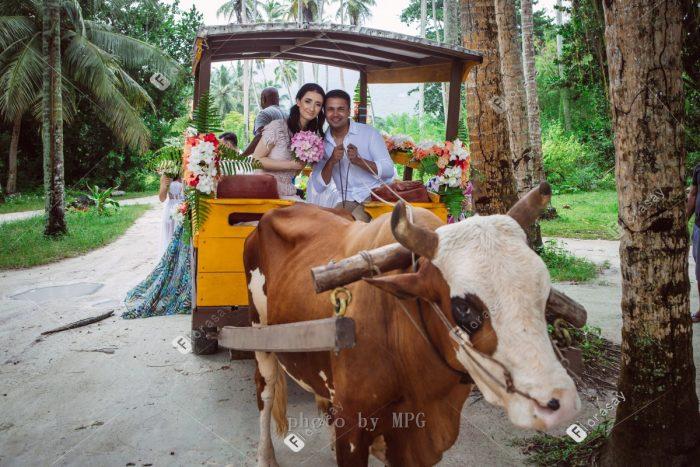 塞舌尔海外婚礼,海岛婚礼套餐