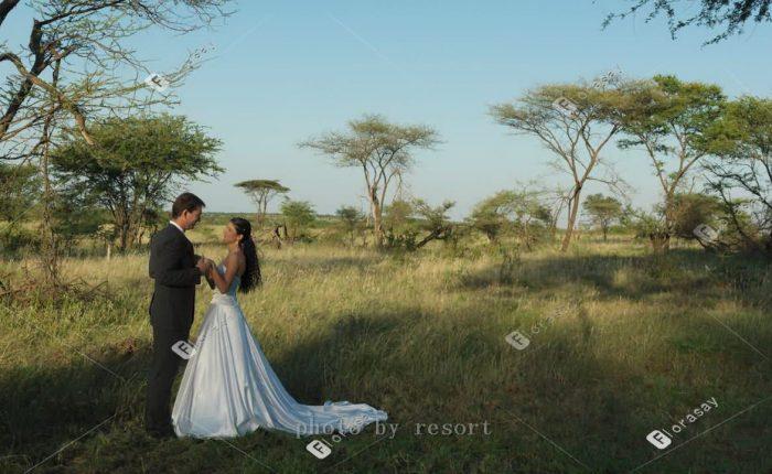 非洲唐桑尼亚塞伦盖蒂草原四季酒店婚礼套餐