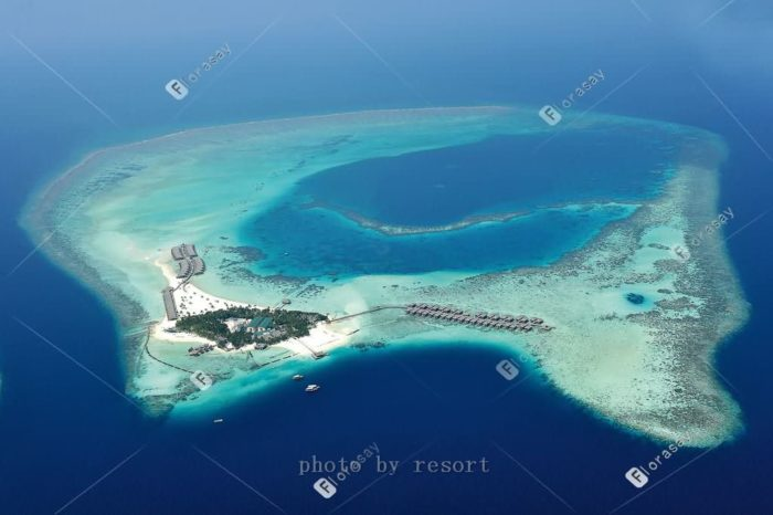 马尔代夫婚礼签约岛