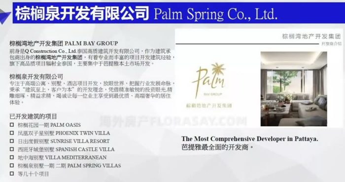 泰国海外房产芭提雅CBD精品,棕榈泉别墅热带棕榈花园